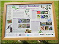SP8901 : Information Board at Boug's Meadow, Great Missenden by David Hillas