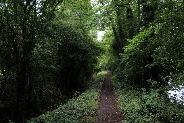 Footpath heading towards Stub Wood