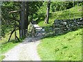 NY3802 : A walk over Wansfell Pike [68] by Michael Dibb