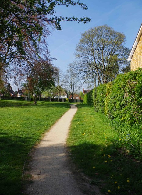 Footpath on the eastern edge of Bewdley Hill Wood, Bewdley Hill, Kidderminster, Worcs