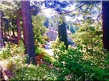 NU0702 : Cragside House by Bill Henderson