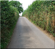 SS9907 : Cullompton: lane above Sunnyburrow Farm by Martin Bodman
