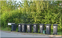 SU2991 : Bins out for collection, Silver Street, Fernham by habiloid