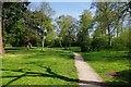 SO8176 : Footpath in Bewdley Hill Wood, Bewdley Hill, Kidderminster, Worcs by P L Chadwick