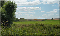 SU1068 : Silbury Hill seen from the path from Beckhampton Road by habiloid