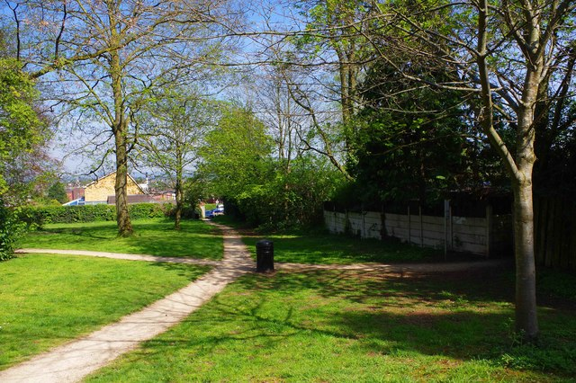 Junction of footpaths, Bewdley Hill Wood, Bewdley Hill, Kidderminster, Worcs