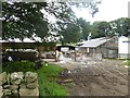 NY5817 : Farmyard with cattle at Wintertarn Farm by Oliver Dixon