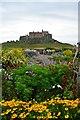 NU1341 : Lindisfarne Castle by John Myers