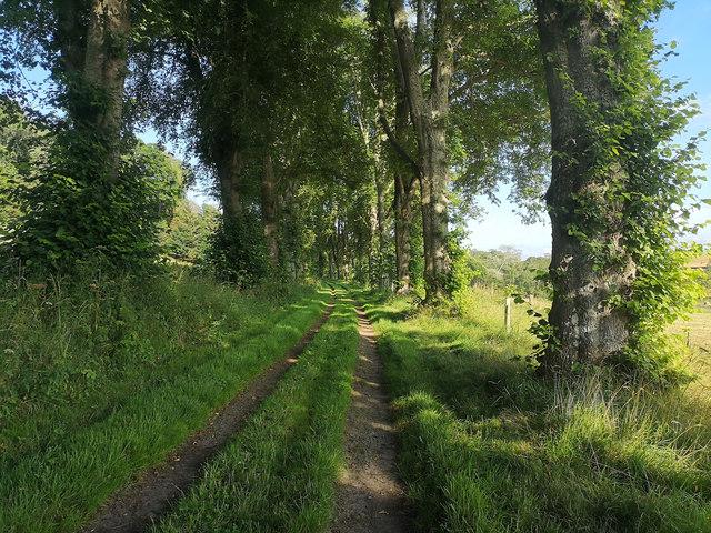 Lower Drive, Rosehaugh