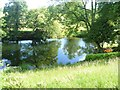 NY3603 : Reflections in the Brathay by Michael Dibb