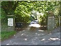 NY3603 : Driveway to White Craggs by Michael Dibb