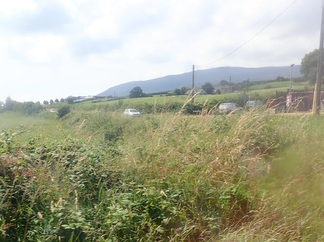 Traffic on the Forkhill Road