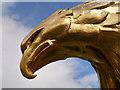 SO7023 : The Eagle's Beak by David Dixon