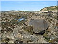 SH2886 : Erratic boulder by Jonathan Wilkins