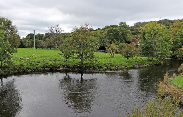 Afon Teifi at Pont Llanfair in Ceredigion