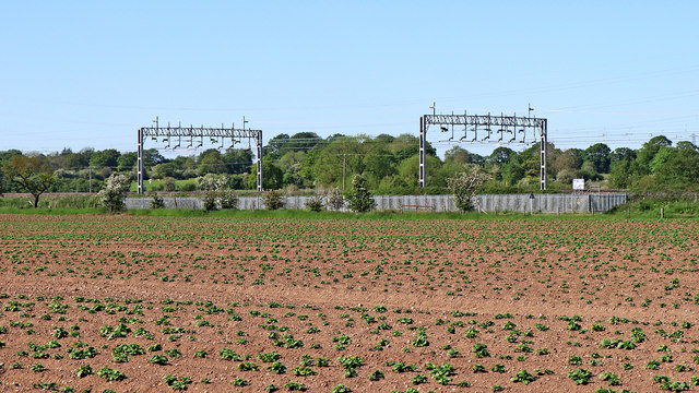 Potato field and railway north-west of Rugeley in Staffordshire