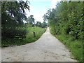 NY6319 : Driveway to Wormpotts Farm by Oliver Dixon