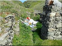SH1626 : Rubbish at Porth Simdde by Eirian Evans