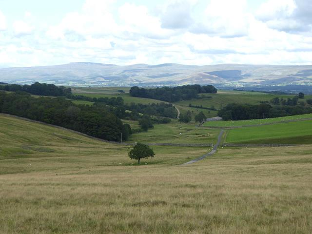 Looking down the valley of Scale Beck