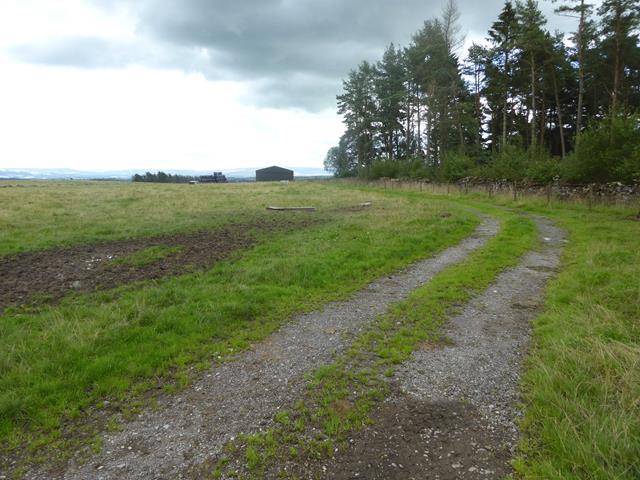 Track beside Smith's Plantation
