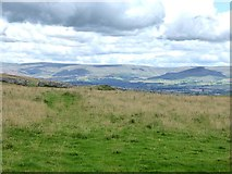 NY6511 : Hillside below Linglow Hill by Oliver Dixon