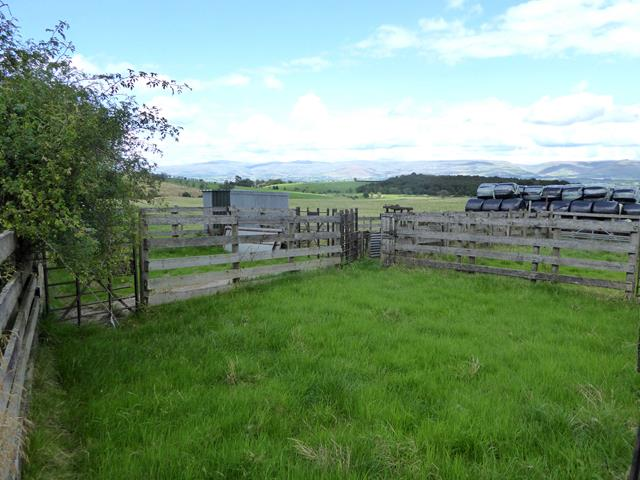 Livestock pens and bales