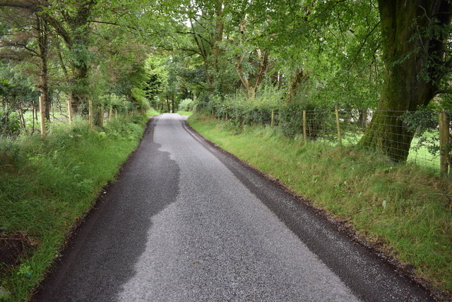 Damp patches along Roeglen Road
