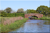 SK0220 : Canal at Taft Bridge east of Colwich, Staffordshire by Roger  Kidd
