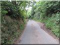 SJ2958 : Passing place in Tir-y-Fron Lane by John S Turner