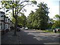 NZ3471 : Marmion Terrace, Monkseaton by Richard Vince