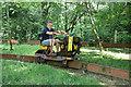SJ2524 : Tanat Valley Light Railway - easy rider by Chris Allen