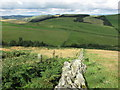 NT8629 : Dry stone wall on Haddon Hill by Geoff Holland