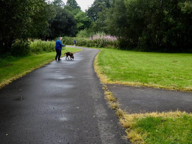Herbicide sprayed along path edges, Mullaghmore