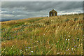 NZ5712 : The Summerhouse Field by Mick Garratt