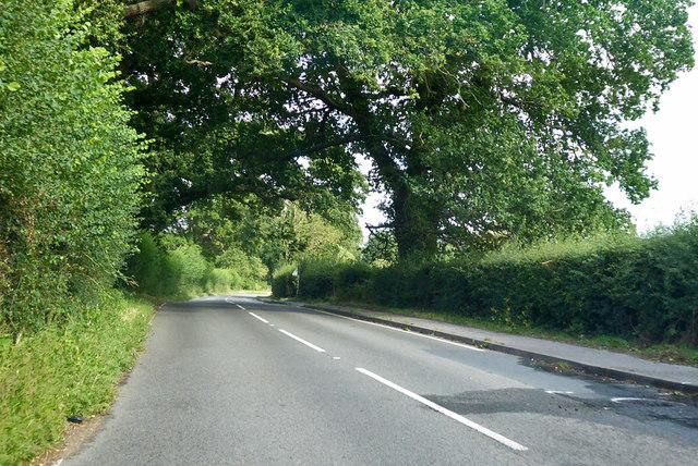 B3016 towards Wokingham