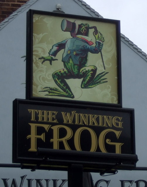 Sign for the Winking Frog, Shifnal
