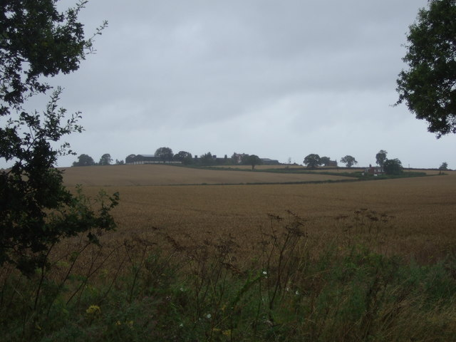 Crop field off National Cycle Route 81