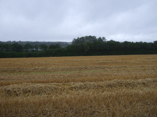 Stubble field off National Cycle Route 81