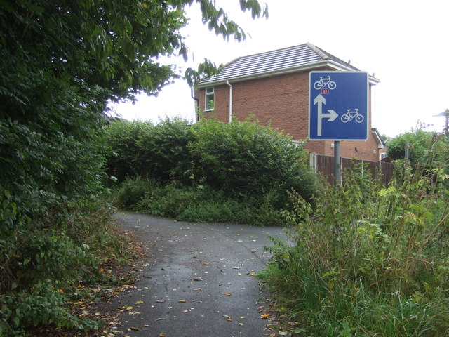 Cycle path junction on National Cycle Route 81