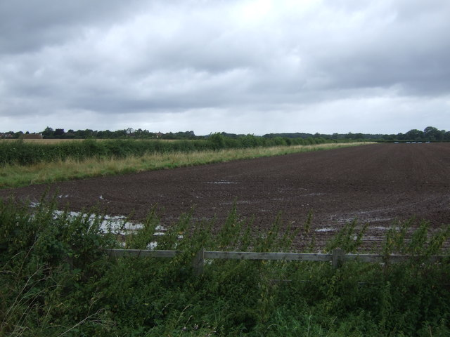 Field off New Trench Road (A518)