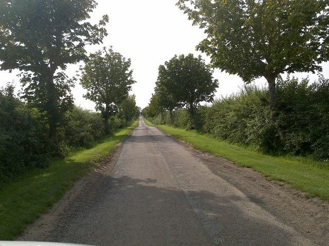 Road at Duddo
