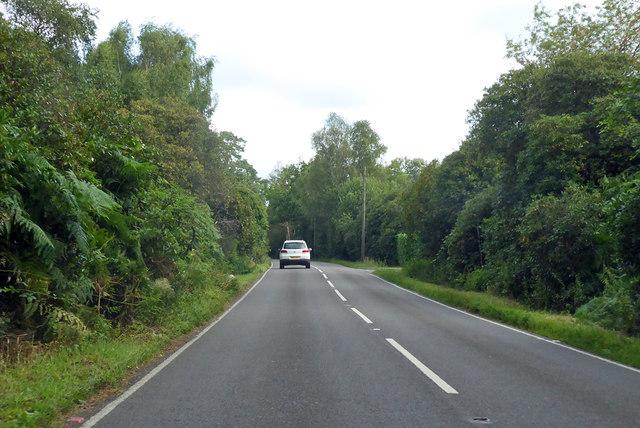 Bearwood Road