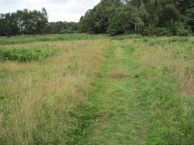 Path on Pound Common
