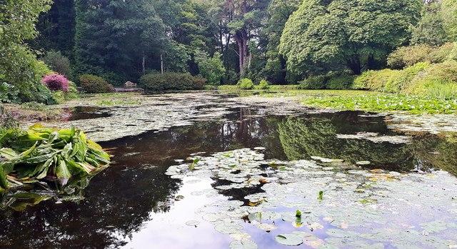 The Azalea Pond at Glenapp Castle hotel