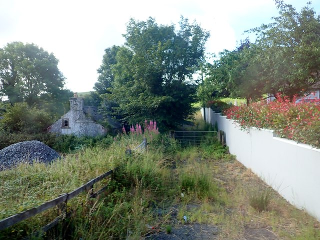 Weed covered drive leading to a derelict cottage outside Belleek