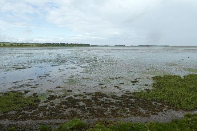 Looking across Budle Bay