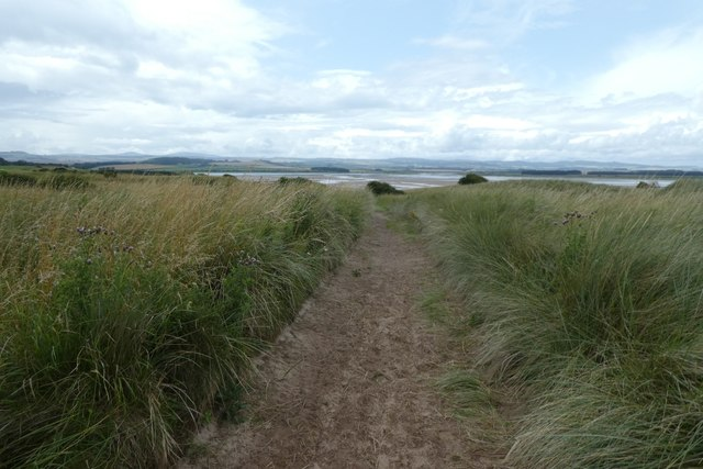 Bridleway above Budle Bay