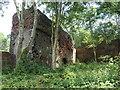 SK3899 : Part of the former Elsecar Ironworks by Christine Johnstone