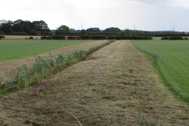 Drainage ditch by Home Farm