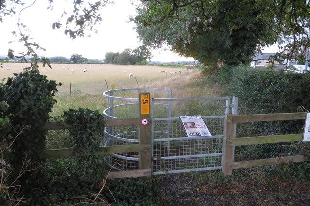 Footpath to Slapton